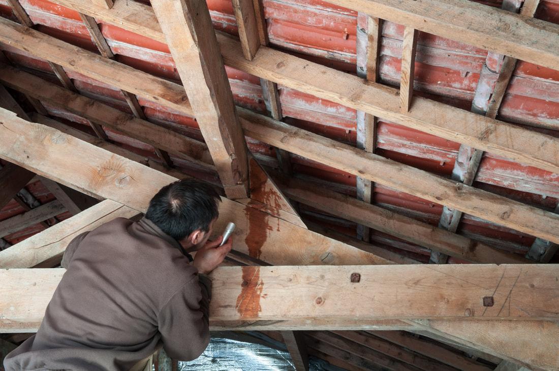 fix-roof-leaks-sooner