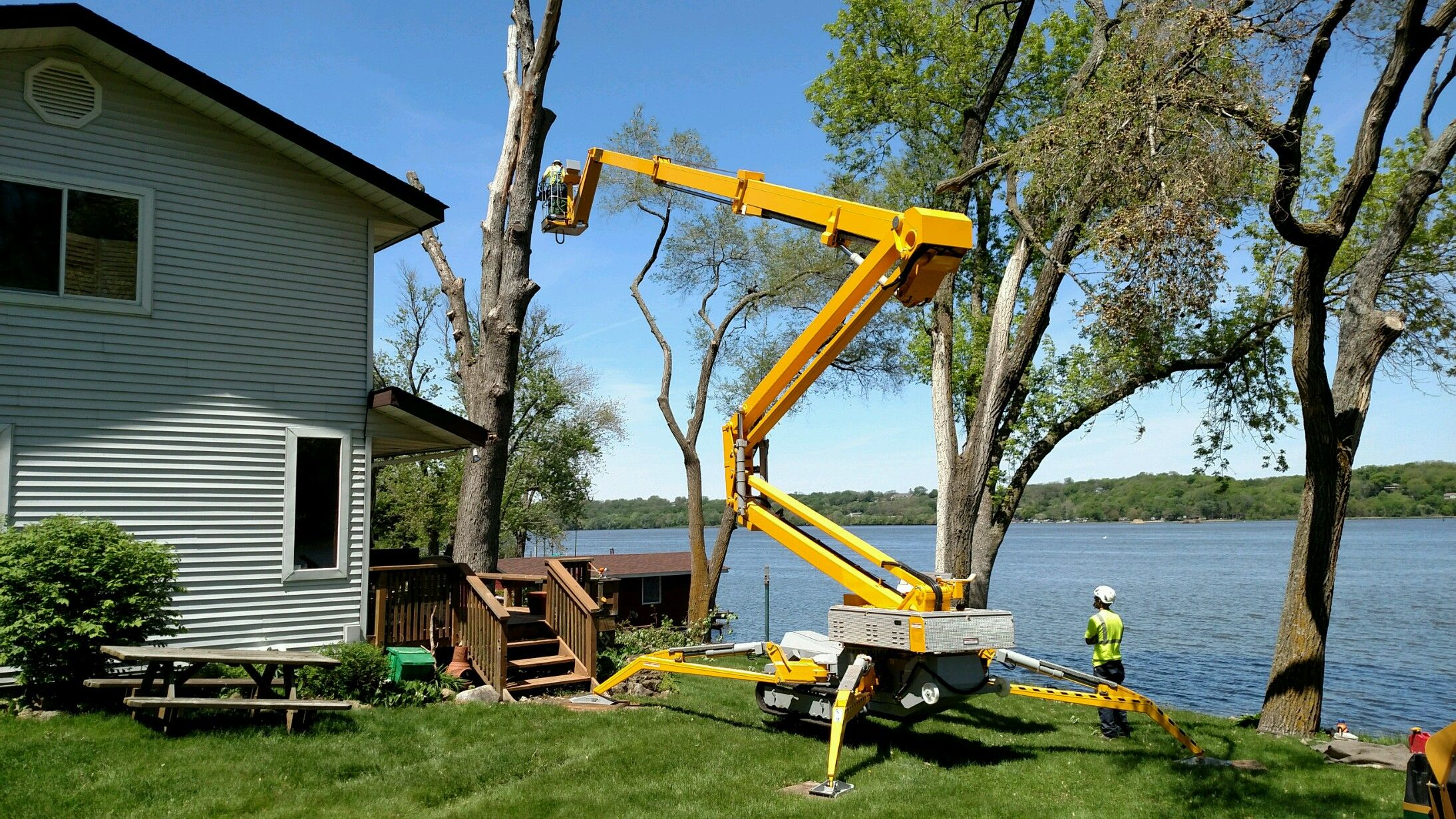 tree trimming contractors