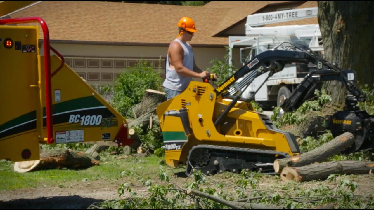 local tree service companies